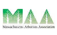 tree service company NH